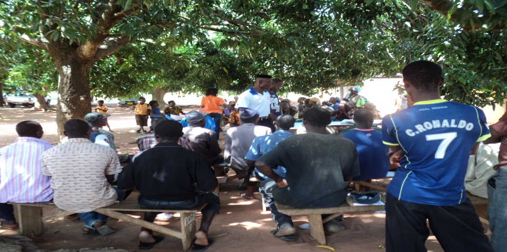 Participants during the community analysis in Ashanti.