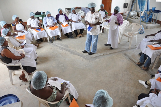 Training processors on standards for cassava products.