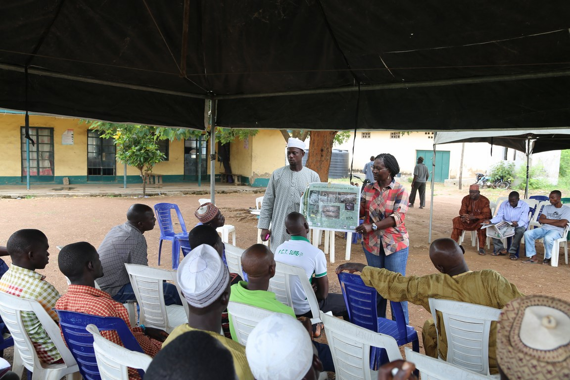 Dr Beatrice Aighewi of YIIFSWA explains about the pests and diseases affecting yam.