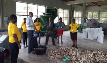 Dr Nteranya Sanginga (center) meets the staff at ILRI led by Country Program Manager Dr Iheanacho Okike at the cassava processing demo facility