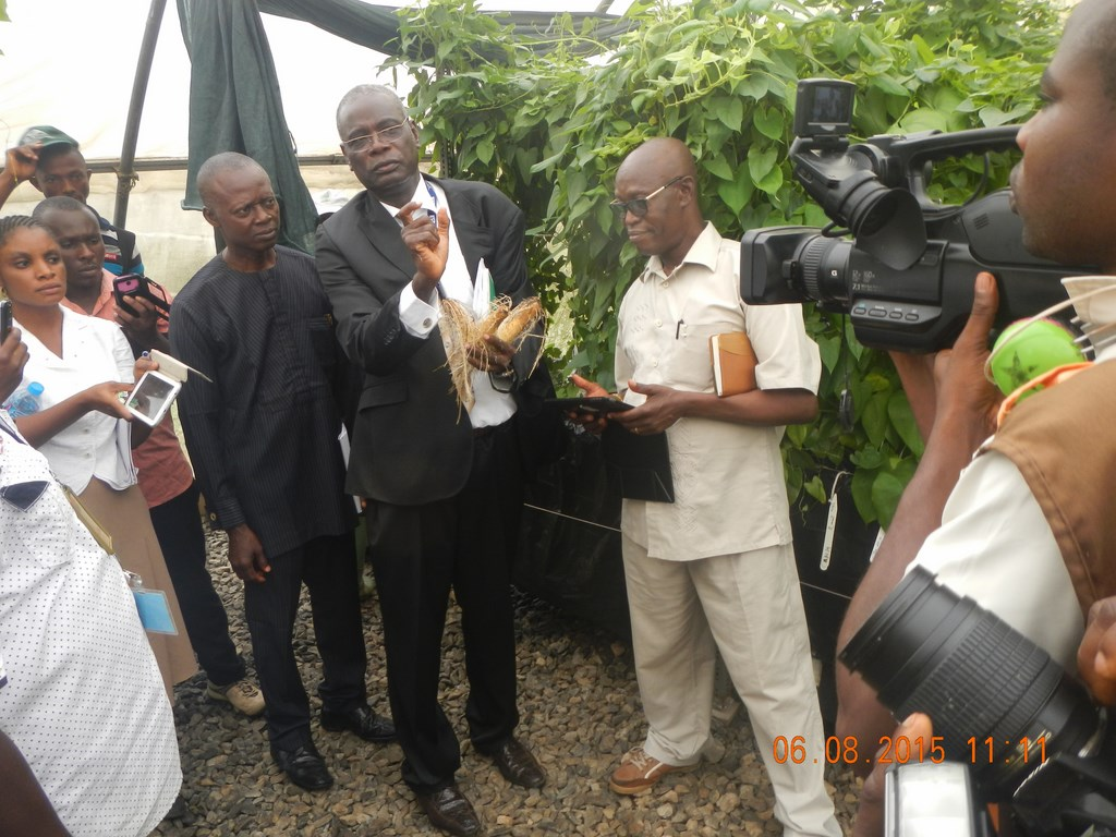 Norbert Maroya briefs seed company representatives visiting IITA.