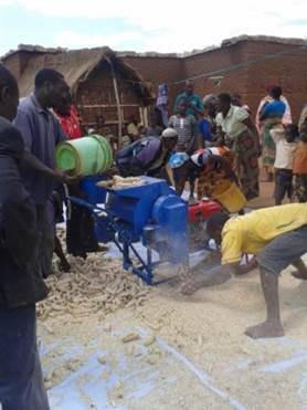 Farmers shelling maize at Yohana Isaya's farm during the postharvest training organized by the Africa RISING–NAFAKA scaling project in Ndurugumi village.