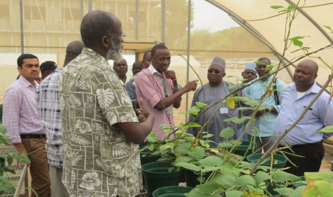 Picture of DG Nteranya Sanginga (left) is shown the recent research developments within IITA-Kano campus