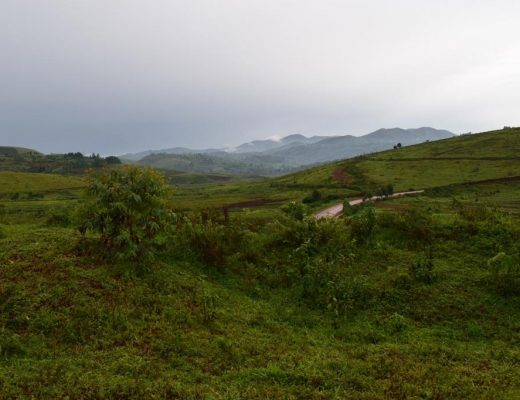 Picture of Walungu territory