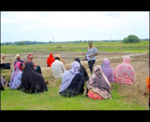 IITA field assistant training farmers in Zanzibar how to construct bunds to grow rice