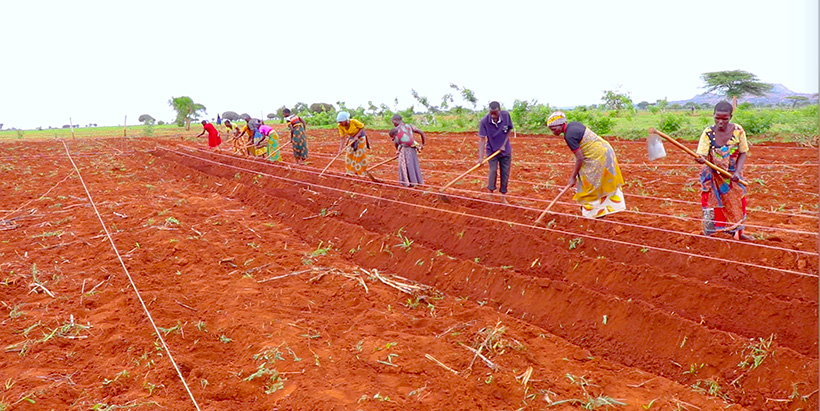 Farmers in Tanzania learning to cope with climate change